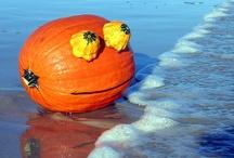 Rupert Pumpkin / by Steven Polatnick