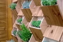 Vertikálne zahrady