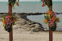 Wedding Flower Archway / Beautiful Wedding Flower Arches