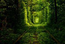 Vergezicht tunnel groen