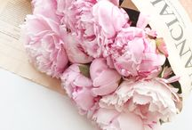 Flowers / Our picks of the best floral arrangments and beautiful flowers for all occasions