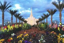 i love to see the temple / by Lauren Ruettinger
