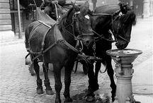 art photo ancienne de paris
