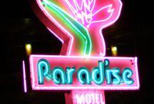 Fashion show concept - Birds of Paradise