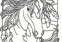 Paarden Ria.