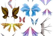 Wings: Drawings and Paintings