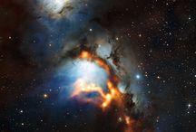Cosmos / by Cidalia Dempster