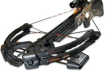Bows & Crossbows