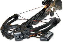 Bows & Crossbows