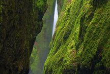 Things I need to do in Oregon / by Amy Lomnicky
