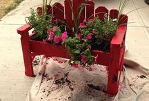 garden- containers and planters / by Penny Herbert