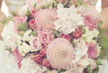 Ramo de novia / Ramo de novia, wedding bouquet