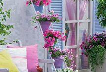 Balcony plants idea