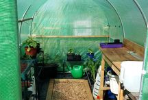 Customer Polytunnel Pics
