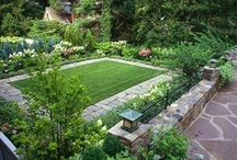 gardening / by Lucinda Law