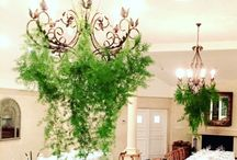 Ceiling Floral Install