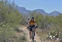 Exploring Tucson / by Liz Waldron