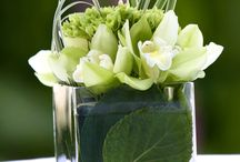 majka flowers