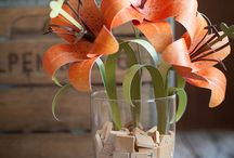 Bloomin' Beautiful / How to's for paper flowers / by Robyn Wallace