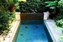 Swim! / by The Bungalow Baker (Elizabeth Poirrier)