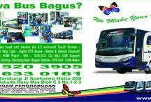 Bus Pariwisata Alam Indonesia / Bus pariwisata suryaputra selalu update setiap waktu.