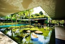 Eco Home / by Eclectic Dreamer