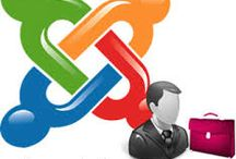 Joomla Development Company India / Joomla Development Company India- Joomla is an award winning, modern, web development and content management system (CMS) which offers you to create interactive and interesting websites. Understand the advantages of hiring a Joomla Development company that will lend you its expertise to help you meet your web promotions objectives.