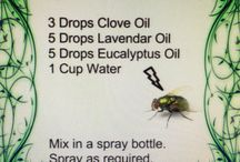 natural solutions for cleaning etc.