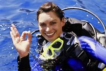Activities and Tours in Bali / Activities and Tours that you can have during your holiday in Bali