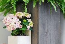 Lautatarha™ Laatikkokaupan parveke- ja puutarhamallisto / Lautatarhalla saat häivähdyksen vanhasta maalaismiljööstä oman kotisi parvekkeelle tai terasille. Näkösuojaa, istutusruukut ja kiinnityspintoja kaikki yhdellä kertaa. 31 kokoa ja 9 väriä