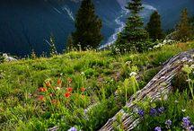Amazing landscapes.... / ...
