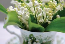 1 er mai - Lily of the valley