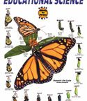 Monarch Breeding