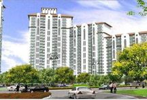 DLF New Launch Projects Gurgaon