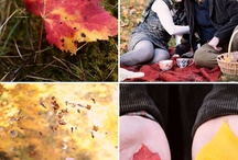 seasons / by Jennifer Pattillo