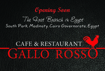 Gallo Rosso Advertising / Coming Soon ....
