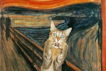 krzyk kotka