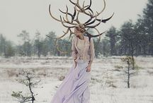 Nordic Fairytale Winter