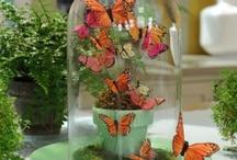thème papillon