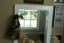 Dog's space in the home / by Cheryll Anne