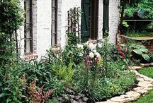 Garden design / Flower edging