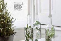 INTERIOR | PLANTS