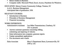Example Resume CV / FREE EXAMPLES RESUMES