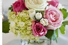 flowers / by Joy Bailey