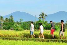 Adventure Bali / Adventure Bali adalah salah satu wisata yang bisa dijadikan pilihan aktivitas ketika wisatawan berlibur di Bali. Bahkan berbagai pilihan wisata petualangan atau adventure di Bali dikombinasikan dengan program outbound, outing dan gathering