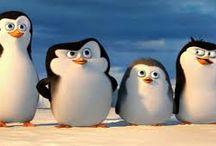 Pingwiny z Madagaskaru / P