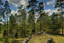 Viking Age In Scandinavia