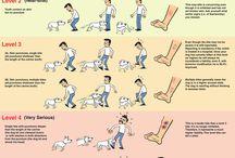 Mascotas y animalillos
