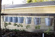 hage - planter/tomat