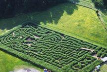 Amazing Mazes to Amaze me / be AMAZED!